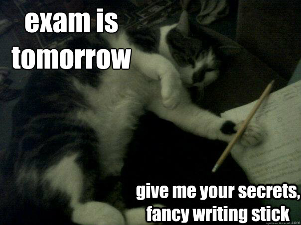 Image result for exam relief